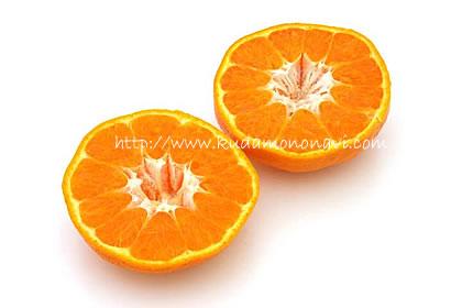 はるみ 柑橘