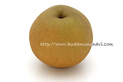 梨 ナシ なし 日本梨
