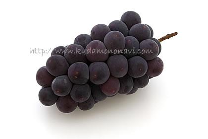 ぶどう 葡萄 ブドウ