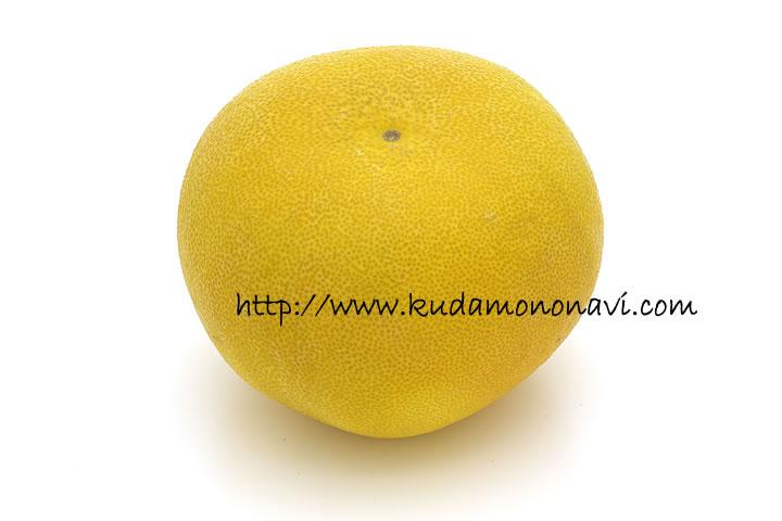 安政柑/あんせいかんの写真(画像)|カンキツ(その他柑橘類)