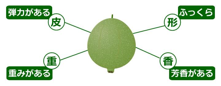 食べ 方 グアバ 【イエローストロベリーグアバ】とは?南国果樹なのに日本でも育つ?